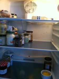 I probably should have left some food in the fridge, too